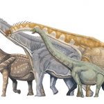 Could Dinosaurs Roar? Ancient Voice Box Offers Some Answers