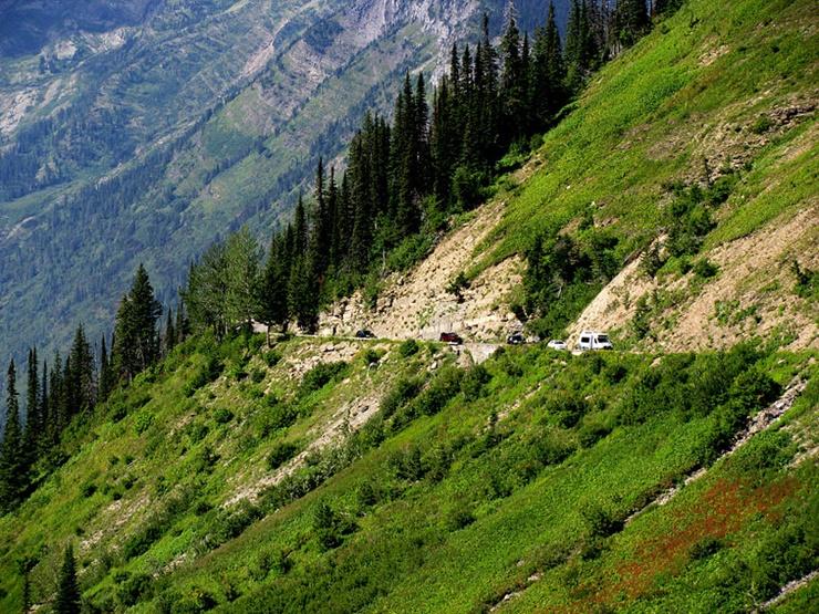glacier-national-park-insects-habitat-danger